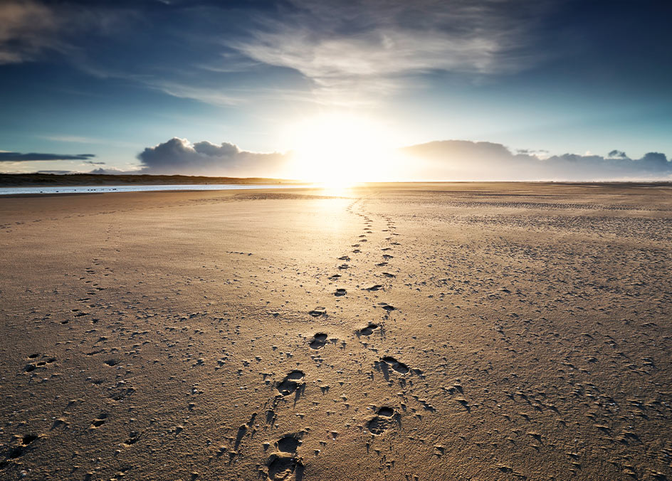 Foot prints in sand, on beach, EMDR therapy